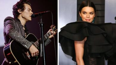 Photo of Harry Styles and Kendall Jenner Shouldn't have to Come out Because we Want Them to