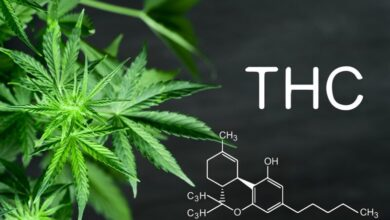 Photo of Do THC Detox Products Work?