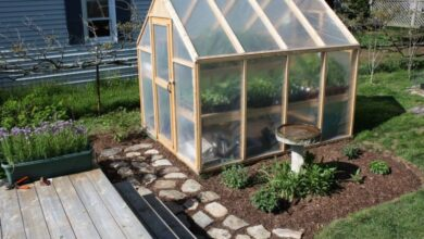 Photo of How to Build Your Own Greenhouse