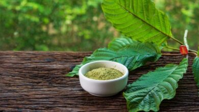Photo of Pros and Cons of Kratom – Complete Guide