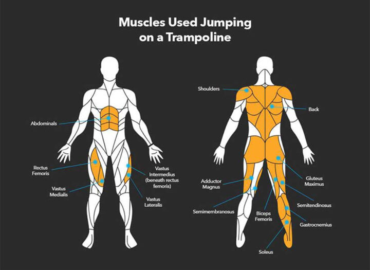 Muscle toning on Trampoline